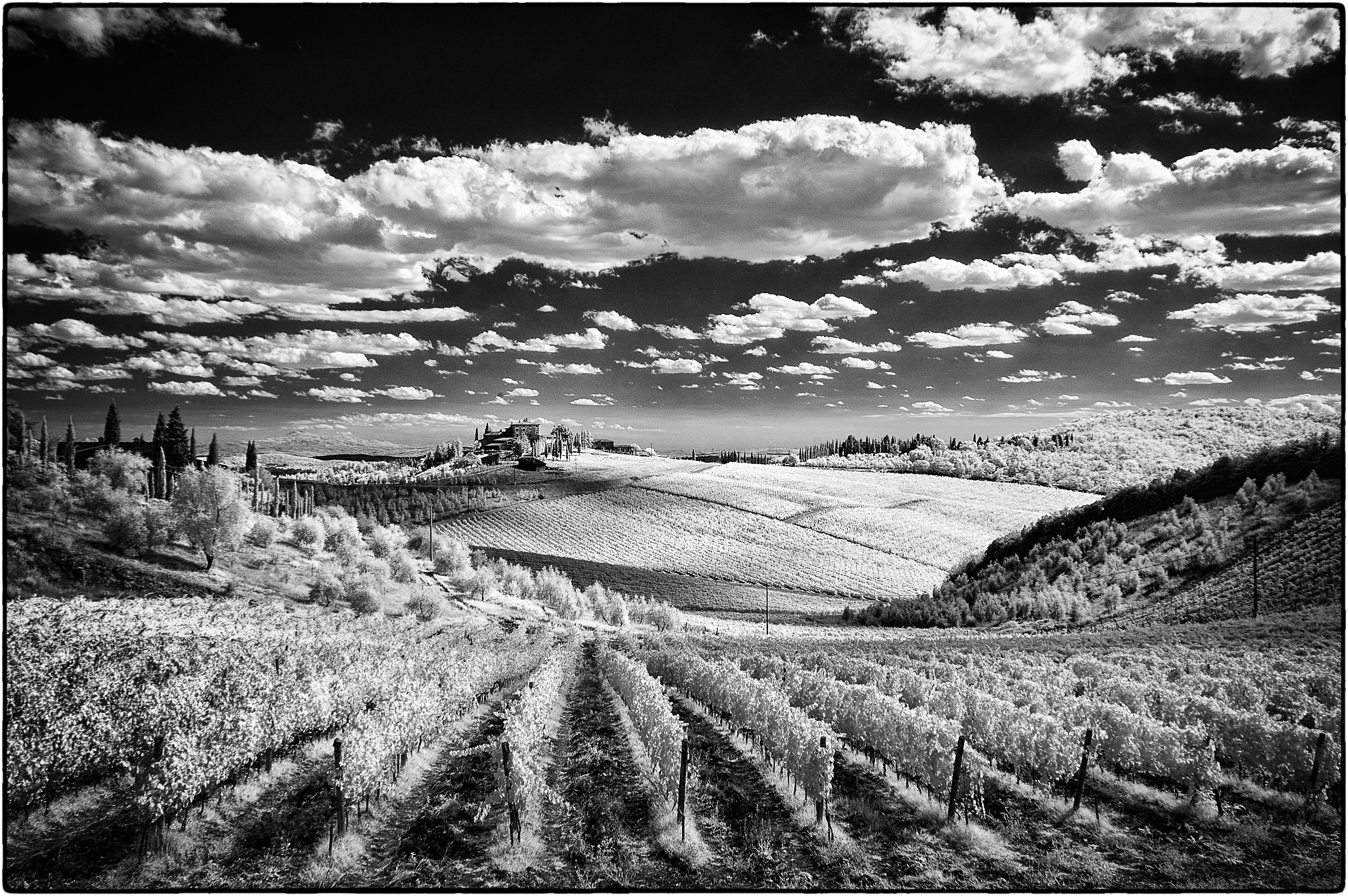 X photography beyond visible light shooting in infrared